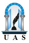 Université Arabe des Sciences